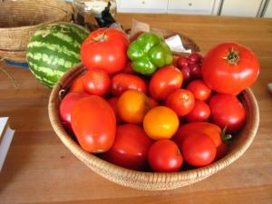 Tomatoes_September