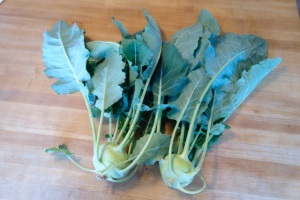 Kohlrabi harvest with tops